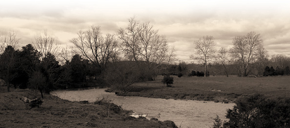Photograph of trees and a river