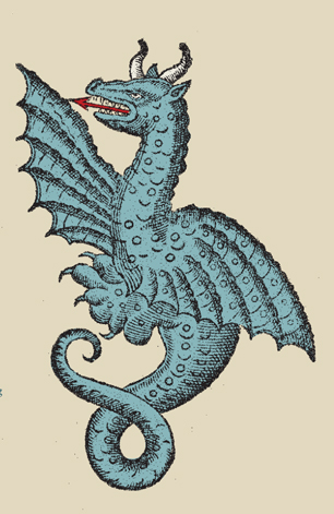 Illustration of dragon
