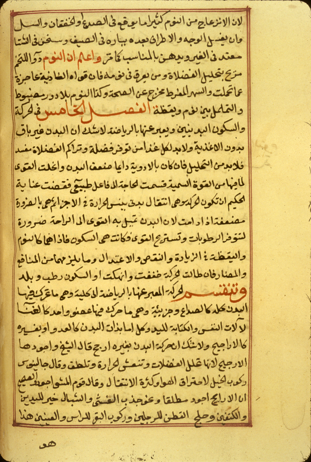 Islamic Medical Manuscripts Medical Monographs 5