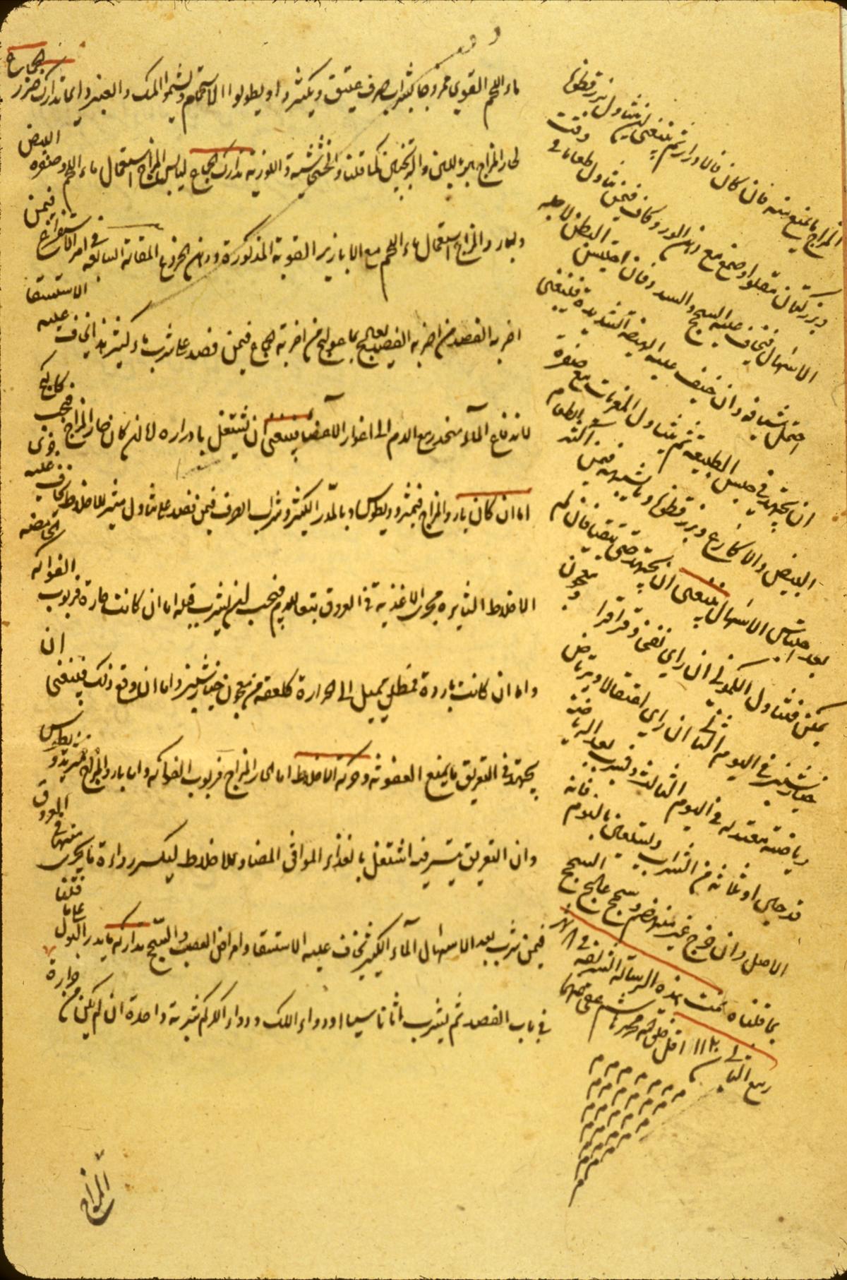 Islamic Medical Manuscripts, Dietetics 9