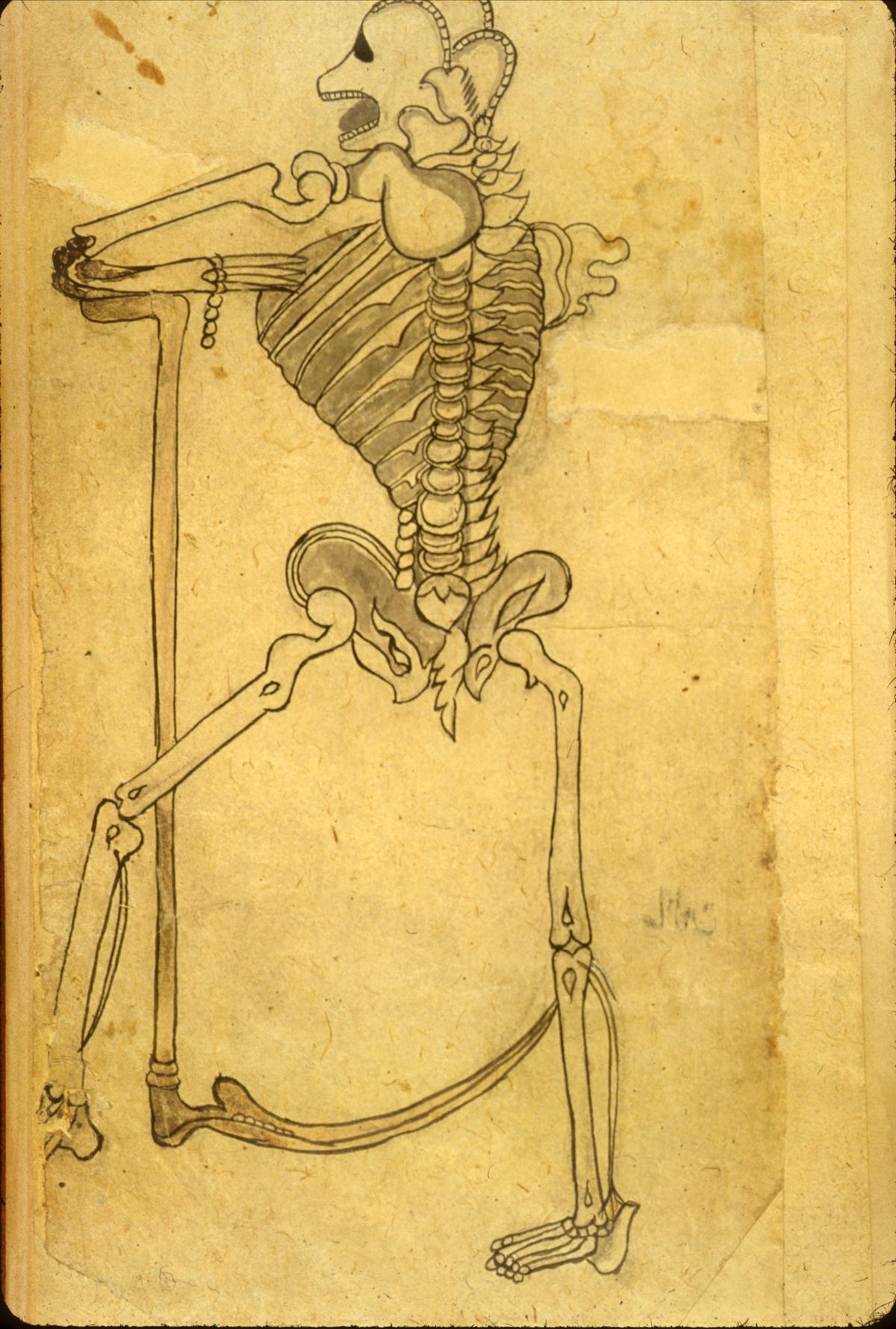 Islamic Medical Manuscripts, Medical Monographs - Gallery