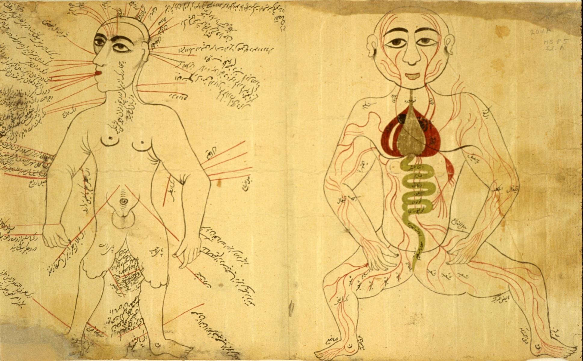Islamic Medical Manuscripts, Medical Monographs 6