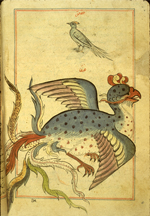 Folio 187b from Zakarīyā' ibn Muḥammad al-Qazwīnī's Ajā'ib al-makhlūqāt wa-gharā'ib al-mawjūdāt (Marvels of Things Created and Miraculous Aspects of Things Existing) featuring a simurgh ('anqa', a mythical bird) and, above, a bird that appears to be a hoopoe but is labeled 'aq'aq (magpie). The thin, brittle, lightly glossed, fibrous, yellow-brown paper has horizontal laid lines. The illustrations are set within frames of two red and one blue lines.