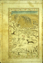 A full-page miniature drawing in black ink with gilt and blue and red accents.  An ascetic sits on a mountain side while pairs of animals (tigers, antelope, birds, and foxes) sit quietly around him. From an anonymous and untitled collection of Persian love poetry. The gray-brown, semi-glossy paper has horizontal, sagging laid lines.