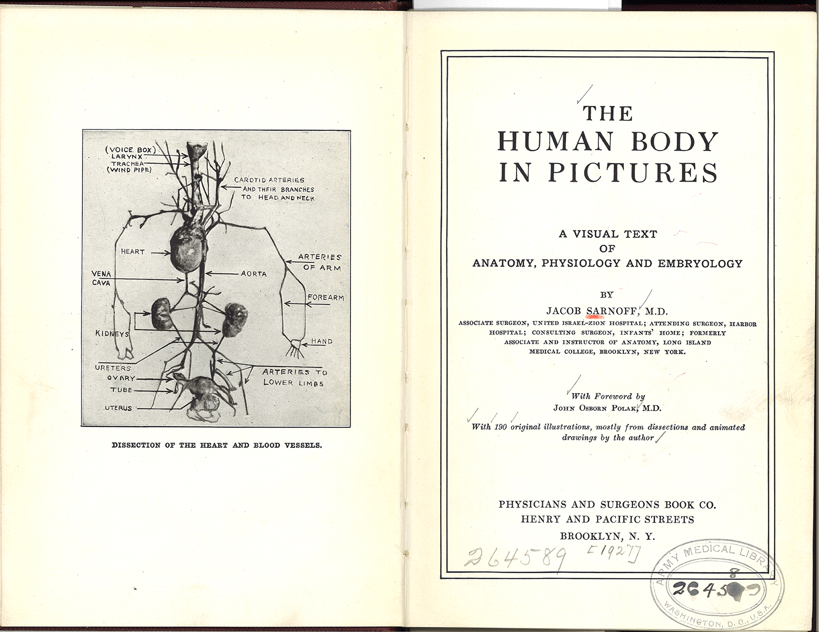 title page and frontispiece from jacob sarnoff the human body in pictures ca