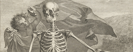 Detail from an anatomical engraving