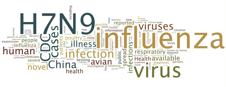 A word cloud featuring H7N1 and Influenza.