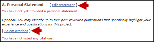 screen shot of Personal statement section.