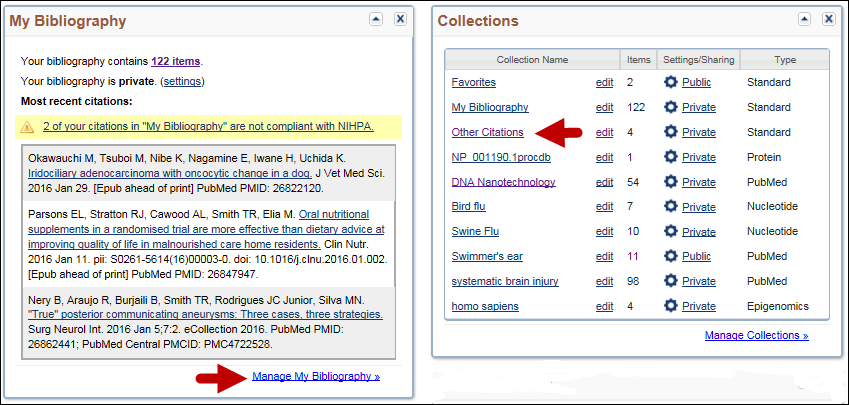 screen shot of Accessing My Bibliography or Other Citations collection