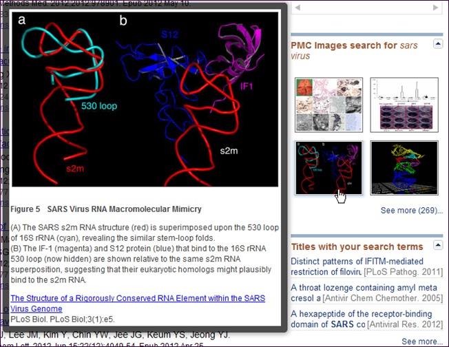 """Screen capture of Mouseover for the PubMed """"Results by year"""" timeline tool"""