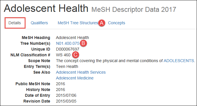 screenshot of the MeSH record Details view for Adolescent Health